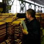 Шестомесечни извоз РТБ-а Бор вредан 138 милиона долара
