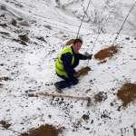 До првог снега 26.000 садница багрема на високим планирима